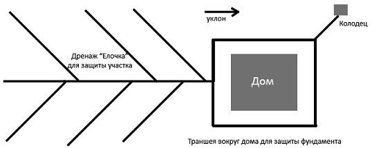 Дренажная система по схеме елочка
